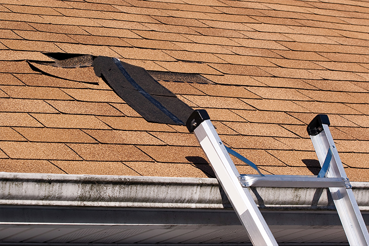 Does Your Roof Need to Be Repaired or Replaced